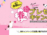 Leawo 春のわくわくプレゼントキャンペーン、人気商品50%OFF&全額還元
