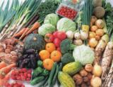 東都生協の新鮮野菜産直即売会