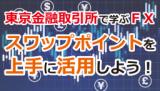 12/10東京 取引所で学ぶFX スワップポイントを上手に活用!
