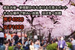 3/29(日)親友共催・新宿からも歩ける距離で☆お花見企画、大人数が苦手な人でも楽しめる丁度い...