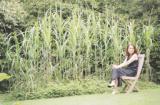 新しい緑のガーデン イギリスの庭に学ぶガーデンデザインセミナー