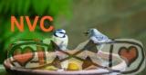 NVC非暴力コミュニケーション@kosaten