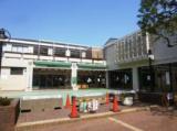 桜丘児童館 9月さくスポ