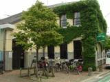 【中止】山野児童館 5月 Teensプロジェクト 卓球afternoon tea | 世田谷区ホームページ