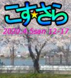 こす☆さら川越27 花見会