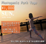 Photogenic Park Yoga