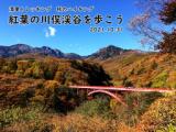 清里トレッキング ~紅葉の川俣渓谷を歩こう~