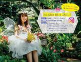 【はなぶんフェアリーリング】 Instagramフォトコンテスト開催!(6/1~6/30)