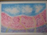 ゆるりと3色パステル画ワークショップ in ウェルカフェ(ラベンダーを描く。)