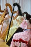 南米のハープのキラキラした音色に癒される!「アルパ」体験レッスン