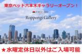 ★水曜定休日以外東京ベッド【六本木ギャラリー】『ご招待フェア』