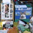 猫に優しいイベント